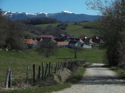 village in background