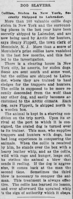 Dog slavers